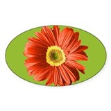 Pop Art Red Gerbera Daisy Oval Decal