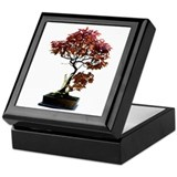Red Leaf Bonsai Keepsake Box