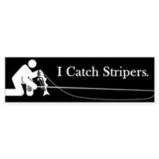 """I Catch Stripers"" Bumper Bumper Sticker"