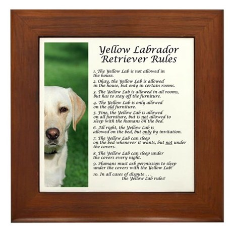 Yellow Lab Rules Framed Tile