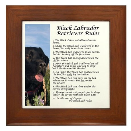 Black Lab Rules Framed Tile