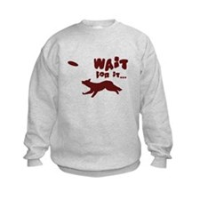 Border Collie Disc Sweatshirt