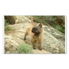 Cairn Terrier Rectangle Decal