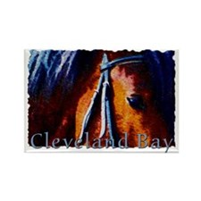 Cleveland Bay Horse Rectangle Magnet (100 pack)