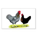 Black Sex-linked Chickens Rectangle Sticker 10 pk