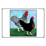 Black Sex-link Fowl Banner