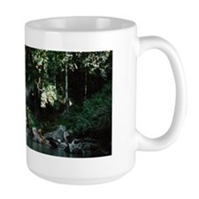 Waterfall, Mt Tambourine Mug