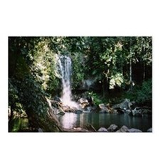 Waterfall, Mt Tambourine Postcards (Package of 8)