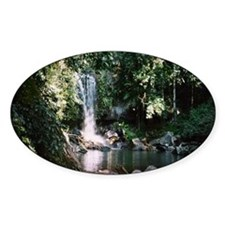 Waterfall, Mt Tambourine Oval Decal