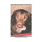 TASTY Chocolate Lab dog gift Rectangle Sticker 10