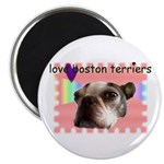 LOVE MY BOSTON TERRIER Magnet
