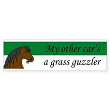 Horse Bumper Car Sticker