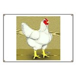 Cornish/Rock Cross Hen Banner