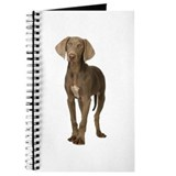 Weimaraner Picture - Journal