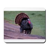 Strutting Tom Turkey Mousepad