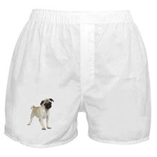 Pug Picture - Boxer Shorts