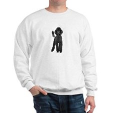 Poodle Picture - Sweatshirt