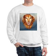 Fletcher the Golden Sweatshirt