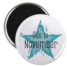 Blue Star Due In November Magnet