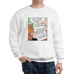 Pumpkin Resume Fairy Tale Sweatshirt