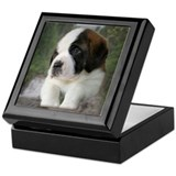 Saint Bernard Puppy Keepsake Box