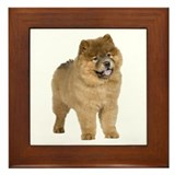 Chow Picture - Framed Tile