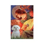 Mandolin Angel / Maltese Rectangle Magnet (10 pack
