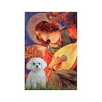Mandolin Angel / Maltese Rectangle Magnet (10 pack