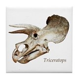 Triceratops Skull Tile Coaster