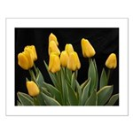 Yellow Tulips Small Poster