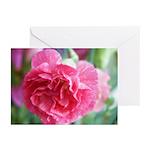 Pink Carnation Greeting Cards (Pk of 10)