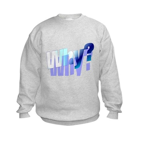 Why Kids Sweatshirt