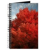 Unique  autumn landscape Journal
