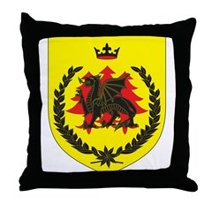 King of Drachenwald Throne Pillow