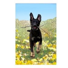 Vader With Stick In Field Postcards (Package of 8)