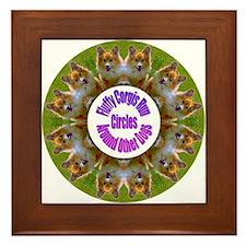 Fluffy Corgis Run Circles Around Other Dogs Framed