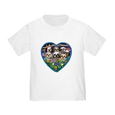 Shih Tzus in Heart Garden T