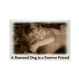 Dog Rescue Rectangle Magnet