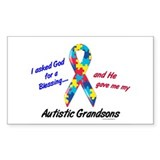 Blessing 3 (Autistic Grandsons) Decal