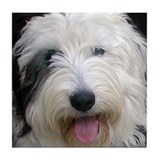 Old English Sheepdog II Tile Coaster