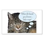 CAT NAP HUMOR Rectangle Sticker