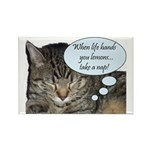 CAT NAP HUMOR Rectangle Magnet
