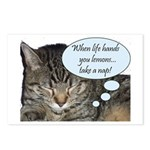 CAT NAP HUMOR Postcards (Package of 8)