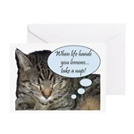 CAT NAP HUMOR Greeting Card