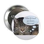 CAT NAP HUMOR 2.25