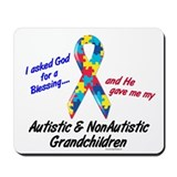 Blessing 3 (Autistic/NonAutistic Grandchildren) Mo