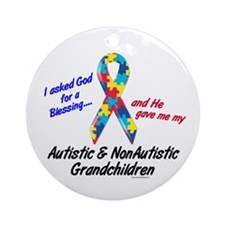 Blessing 3 (Autistic/NonAutistic Grandchildren) Or