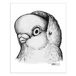 Reinaugen Pigeon Small Poster