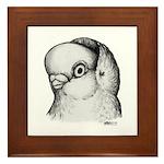 Reinaugen Pigeon Framed Tile