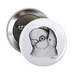 """Reinaugen Pigeon 2.25"""" Button (10 pack)"""